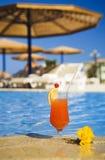 Cocktai anaranjado Imagenes de archivo