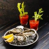 Cocktail écossé d'huîtres et de bloody mary photographie stock