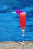 Cocktail. Royalty-vrije Stock Fotografie