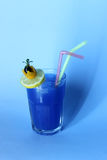 Cocktail. With straw and decoration Royalty Free Stock Images