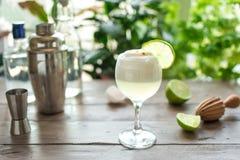 Cocktail aigre de Pisco photographie stock libre de droits