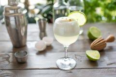 Cocktail aigre de Pisco photos libres de droits