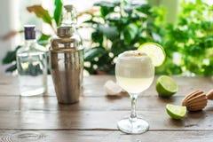 Cocktail aigre de Pisco images libres de droits