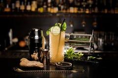 Cocktail alcoólico fresco com pepino, hortelã e gengibre foto de stock