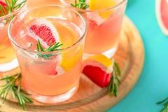 Cocktail alcoolique rose avec le pamplemousse, la glace et la menthe photographie stock libre de droits