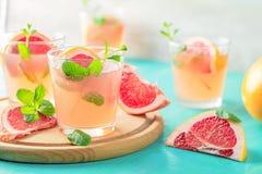 Cocktail alcoolique rose frais avec le pamplemousse, la glace et la menthe image libre de droits