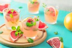 Cocktail alcoolique rose frais avec le pamplemousse, la glace et la menthe photos libres de droits