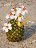 Cocktail auf dem Strand Lizenzfreies Stockbild