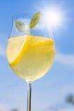 Cocktail avec des parts de citron Image stock