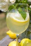 Cocktail avec des parts de citron et des glaçons Photo stock