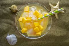 Cocktail avec la mangue et l'ananas sur la plage images libres de droits