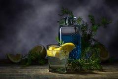Cocktail avec le genièvre, le tonique et le citron bleus image libre de droits