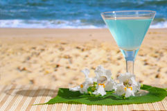Cocktail at the Beach. With flowers Stock Images