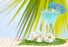 Cocktail at the Beach royalty free stock images