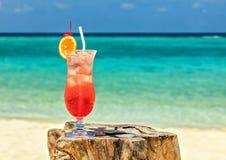 Cocktail on a beach Stock Photography