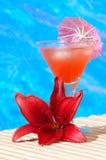 Cocktail bij het Strand Royalty-vrije Stock Afbeeldingen