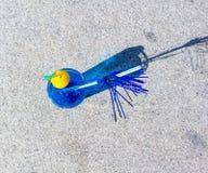 Cocktail bleu avec son ombre Photo libre de droits