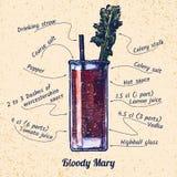 Cocktail bloedige Mary Royalty-vrije Stock Foto's