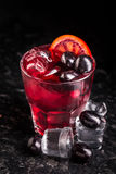 Cocktail with blood oranges and grapes Stock Images