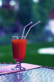 Cocktail Bloody Merry in a glass Royalty Free Stock Images