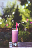 Cocktail. Blueberry cocktail in the garden Stock Photo