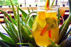 Cocktail casalingo della limonata limone dell'arancia della menta della calce Immagine Stock