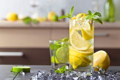 Cocktail with citrus and peppermint. Stock Photos