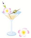Cocktail claro Fotografia de Stock