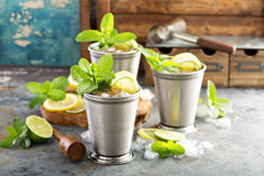 Cocktail classique de julep en bon état photographie stock libre de droits