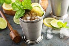 Cocktail classique de julep en bon état image libre de droits