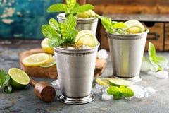 Cocktail classique de julep en bon état photo stock