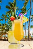 Cocktail. Pina colada pineapple juice tropical drink drink fruit Royalty Free Stock Image