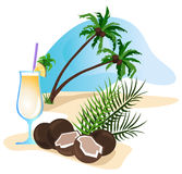 Cocktail and Coconut Stock Photography