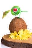 Cocktail coconut Stock Photos