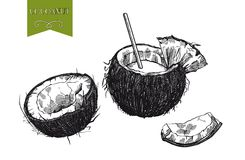 Cocktail of coconut milk Royalty Free Stock Photo