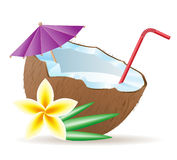 Cocktail of coconut vector illustration Stock Photography
