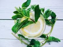 cocktail con le foglie di menta e del limone su un fondo bianco Fotografia Stock