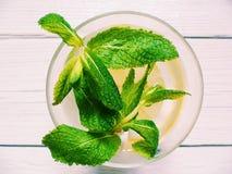 cocktail con le foglie di menta e del limone su un fondo bianco Fotografia Stock Libera da Diritti