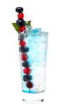 Cocktail cranberry blueberry Stock Photography