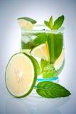 Cocktail cubano di Mojito Fotografia Stock Libera da Diritti