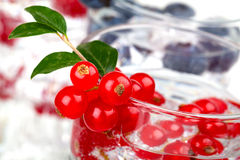 Cocktail with currant Royalty Free Stock Images