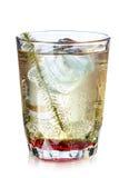 Cocktail d'été Images libres de droits