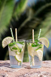 Cocktail da água de soda da bebida do verão Foto de Stock