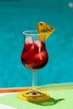 Cocktail da airela Foto de Stock