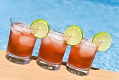 Cocktail da airela pela associação Foto de Stock Royalty Free