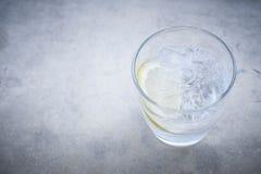 Cocktail da gim e do tônico Imagens de Stock Royalty Free