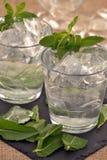 Cocktail da hortelã de limão Fotos de Stock