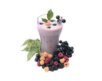 cocktail da Leite-baga em um fundo branco Fotografia de Stock Royalty Free