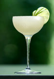 Cocktail daiquiri. White bubbly cocktail with blurry green background, beautifully arranged with pieces of freshly cut lime, in a tall glass Stock Image
