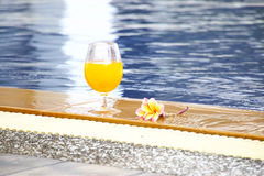 Cocktail dal poolside Immagine Stock